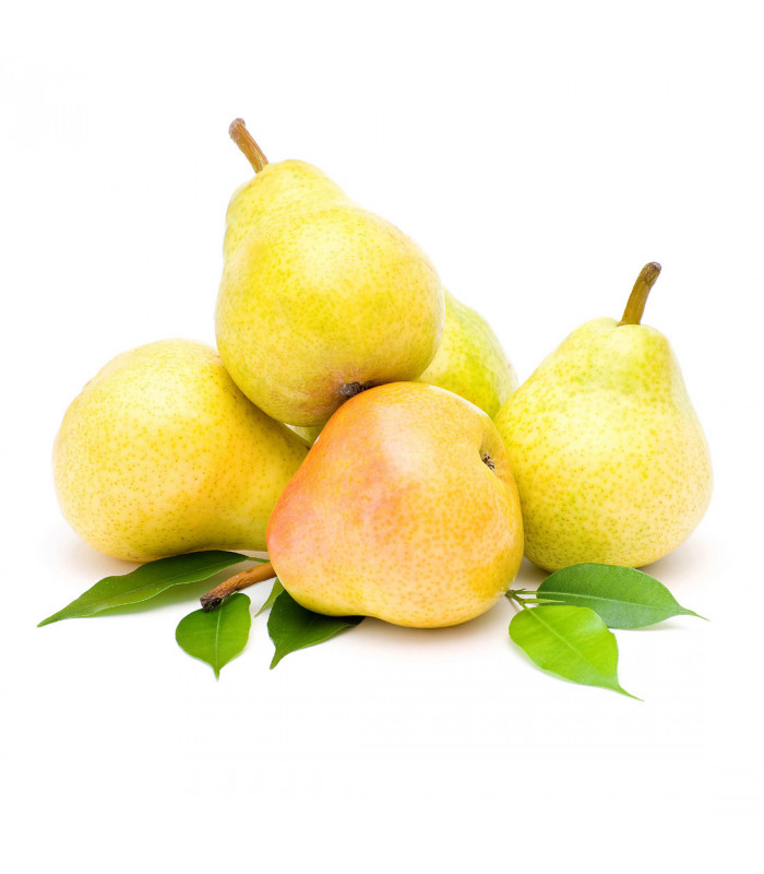 Bio Pears